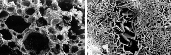 Best Hardeners & Densifiers – Concrete Sealer Reviews